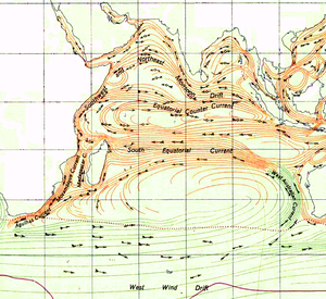 Indian Ocean Gyre - The Indian Ocean gyre