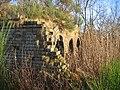 Industrial ruin, Blackrig - geograph.org.uk - 90400.jpg
