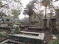 Interiors of Bagmari Muslim Cemetery.JPG