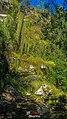 Itabira - State of Minas Gerais, Brazil - panoramio (94).jpg