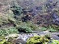 Izvor Kozice - panoramio (1).jpg