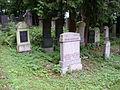 Jüdischer Friedhof Erlangen Juli 2010 03.JPG