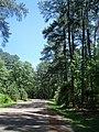 Jamestown, VA 23185, USA - panoramio (4).jpg