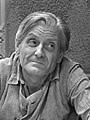 Jan Reusens (1973).jpg