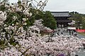 Japan 060416 Ninnaji 03.jpg