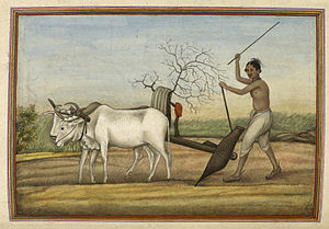 Jat people - 'Jat', a numerous tribe spread over much of north-west India. Once warriors, now mostly agriculturists. Represented by a man ploughing with oxen. — Tashrih al-aqvam (1825)