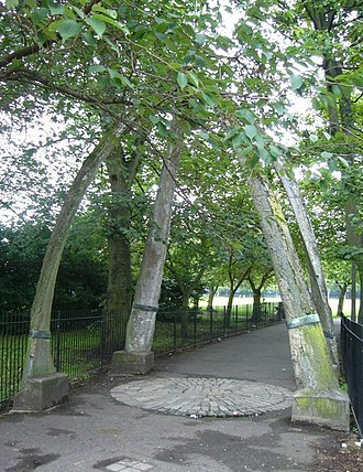 The Meadows (park) - The Jawbone Arch before restoration