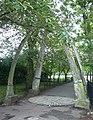 Jawbone Arch, Meadows - geograph.org.uk - 1419472.jpg