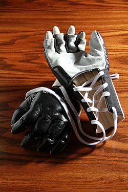 Jeet Kune Do Gloves.jpg