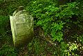 Jewish cemetery Jaroslaw 5.jpg