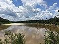 Jutaí - State of Amazonas, Brazil - panoramio (6).jpg