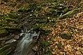 Kamenistý potok, Národná prírodná rezervácia Stužica, Národný park Poloniny.jpg