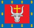 Kaunas County flag.png