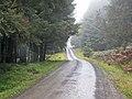 Kielder Forest Drive - geograph.org.uk - 582356.jpg