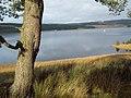 Kielder Reservoir from Bull Crag Peninsula - geograph.org.uk - 29483.jpg