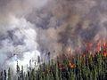 King County Creek Fire 2005.jpg