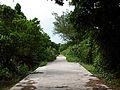 Kudakajima Road 1.jpg