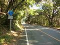 Kumamoto pref road 1-4.JPG