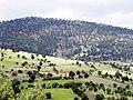 Kurukavak-cicek dağları - panoramio.jpg