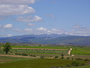 Cross Internacional de Soria - The race course is set in a grassy suburb of the city of Soria