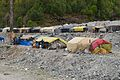 Labour Huts - Project Rohtang Tunnel - Solang Valley - Kullu 2014-05-10 2571.JPG