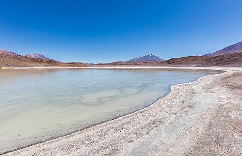 Laguna Honda, Bolivia, 2016-02-03, DD 42.JPG