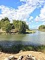Laguna e Karavastasë (Pjesa Perëndimore).jpg