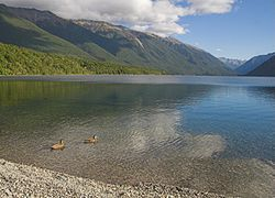 Lake Rotoiti at Nelson Lakes National Park.jpg