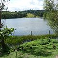 Lake near Harewood Castle 01.jpg