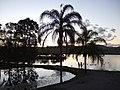 Lake on Bruce Hwy - panoramio.jpg