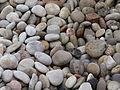 Lakeshore stones.jpg
