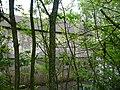 Langenfeld Haus Graven 0014.jpg