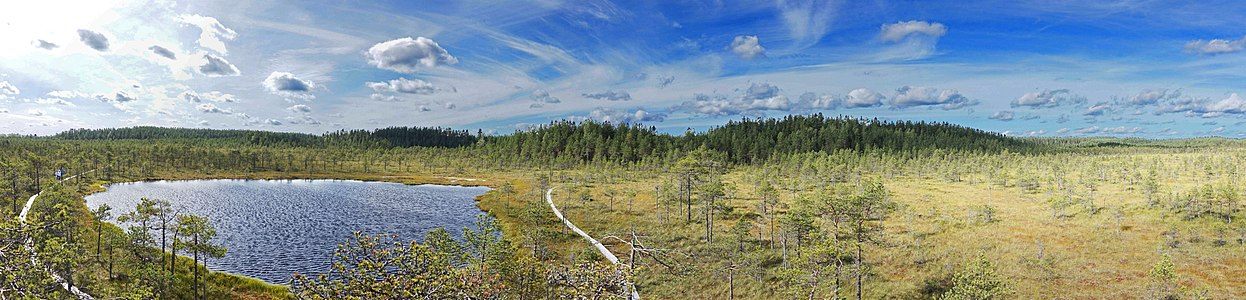 Leivonmäki National Park panorama.jpg