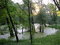 Lithuania, nature (7628647070).jpg