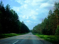 Lithuanian Road KK127.JPG