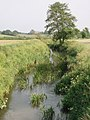 Little Avon River from Matford Bridge - geograph.org.uk - 183315.jpg
