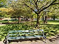 Long shot of the bench (OpenBenches 5896-1).jpg