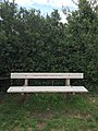 Long shot of the bench (OpenBenches 899).jpg