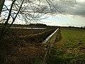 Looking across Whitley Reed - geograph.org.uk - 23.jpg