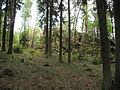 Loupensko (009).jpg