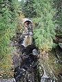 Lower Falls of Bruar - geograph.org.uk - 974905.jpg