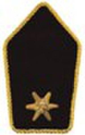 Leutnant - Schulterstück (Panzertruppe)
