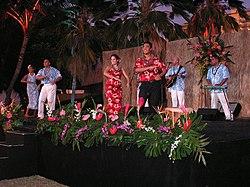 definition of luau