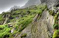 Lush cliffs1 (8045652775) (2).jpg