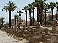 Luxor Temple - panoramio (23).jpg