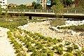 MADRID P.L.M. PARQUE ARGANZUELA-RIO SECO - panoramio (7).jpg