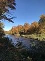 Mad River NY.jpg