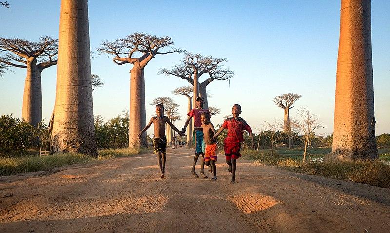 Madagascar (30049867106).jpg