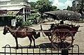 Mandalay-Transport-02-Pferdedroschke-gje.jpg
