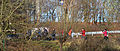 Marche nordique berge gauche Basse-Deûle hiver 2015 b.JPG